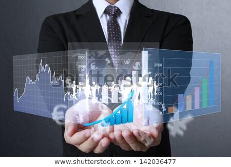 Мир финансовых стороны бизнеса дизайна Сток-фото © bluebay
