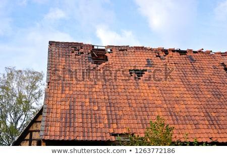 Ouragan détruit toit maison illustration vecteur Photo stock © orensila