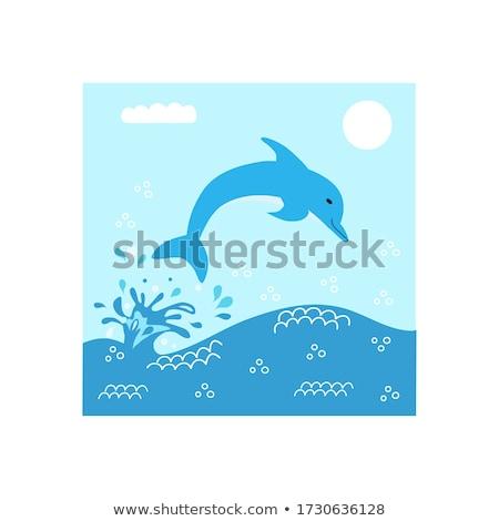 болван дельфин красивой прыжки воды стиль Сток-фото © netkov1