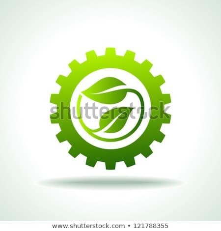 Engins vert vecteur icône design numérique Photo stock © rizwanali3d