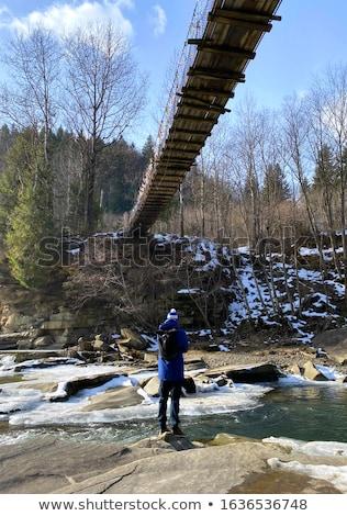 Puente colgante madera agua árbol paisaje Foto stock © Paha_L