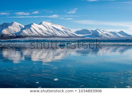 氷河 山 後ろ 自然 風景 ストックフォト © dinozzaver