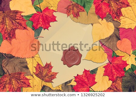 word autumn with colorful nature photos inside stock photo © taiga