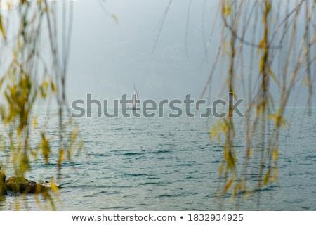Lago di Garda with sailing boats Stock photo © Digifoodstock