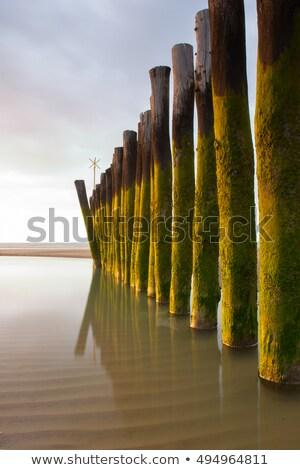 Foto stock: Longa · exposição · foto · pôr · do · sol · azul · onda