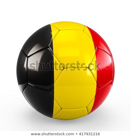 euros · símbolo · europeo · Unión · bandera · 3d - foto stock © drizzd
