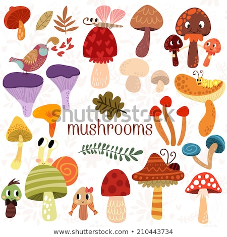 Snail mushroom difference  Stock photo © Olena