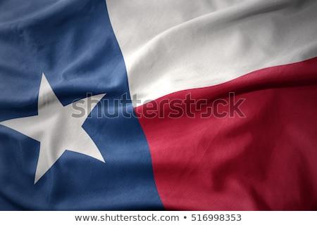 Nowego Texas banderą niebieski czerwony wiatr Zdjęcia stock © BrandonSeidel