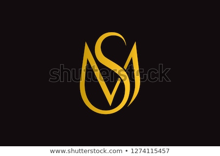 entreprise · marque · identité · vecteur · modèle · design - photo stock © davidarts