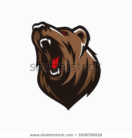 hoofd · vector · grafische · afbeelding · zwarte - stockfoto © popaukropa