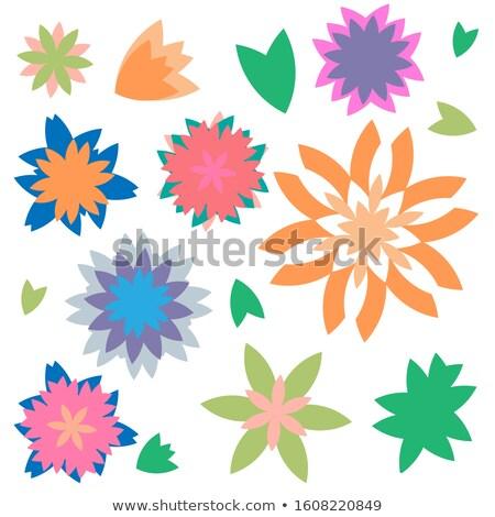 çiçekler · karanfil · buket · renkli · çiçek - stok fotoğraf © terriana