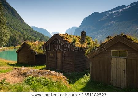 Zöld tó völgy Norvégia festői tájkép Stock fotó © Kotenko