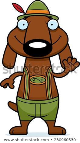 Karikatur Dackel Lederhosen Illustration Hund Stock foto © cthoman