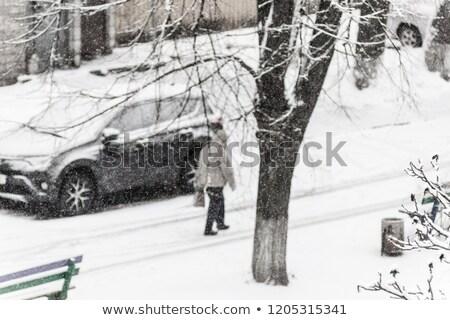şehir ağır kar ağaç adam ışık Stok fotoğraf © TanaCh