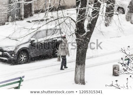 stad · zwaar · sneeuw · boom · man · licht - stockfoto © TanaCh