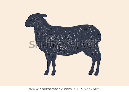 Lamb, sheep. Vintage logo, retro print, poster for Butchery Stock photo © FoxysGraphic