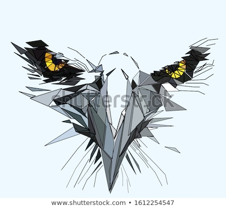 An angry bird above the animal's head Stock photo © colematt