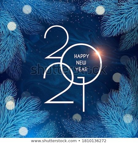 Heiter Weihnachten glückliches neues Jahr Design Tanne Niederlassungen Stock foto © ikopylov