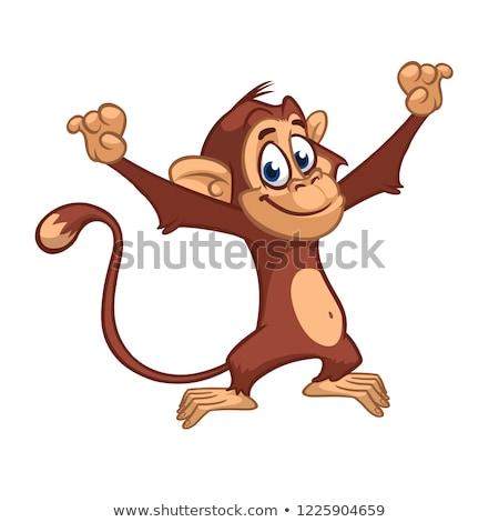 Skicc állat hülye majom illusztráció természet Stock fotó © colematt