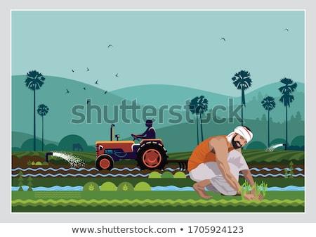 Stockfoto: Landbouwer · agrarisch · machines · vector · banner · uitrusting