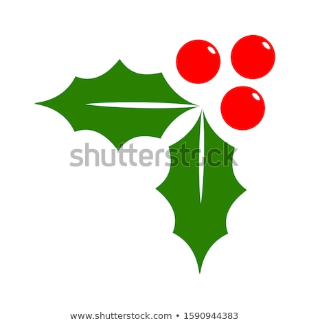 Christmas Holly Berries And Leaves Stock photo © hittoon