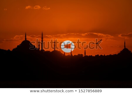 Night view to lighting Suleymaniye Mosque on a background of nigtfall sky, Istanbul Turkey. 4K UHD v Stock photo © artjazz