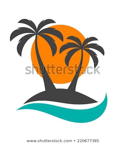 熱帯 海景 ヤシの木 海 風景 砂浜 ストックフォト © liolle