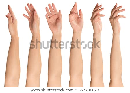 Női kéz kiemelt mutatóujj fehér izolált Stock fotó © OleksandrO