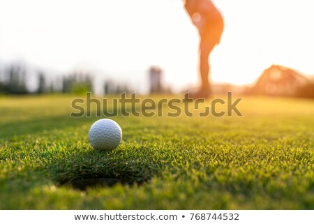 Woman focusing on golf fairway. Stock photo © lichtmeister