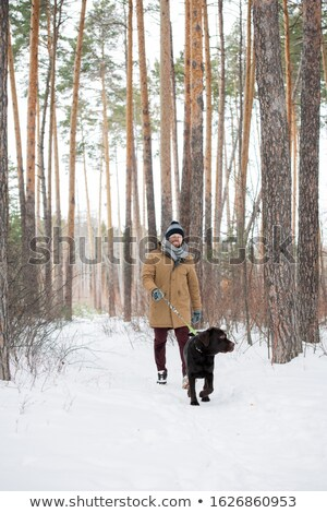 Young man in casual winterwear holding leash while following black retriever Stock photo © pressmaster