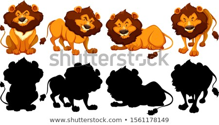 Silhouette, color and outline version of tigers Stock photo © bluering