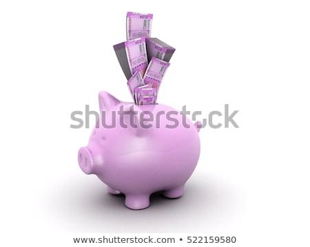 Piggy Bank With Rupee Banknotes Stock photo © albund