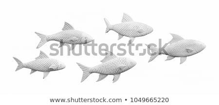 Heykel balık hayvan kafa beyaz Stok fotoğraf © pongam