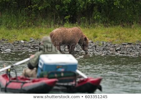 Agua rafting Alaska dos barcos Foto stock © Klodien
