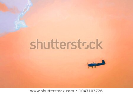 большой самолета силуэта черный серый изолированный Сток-фото © lkeskinen