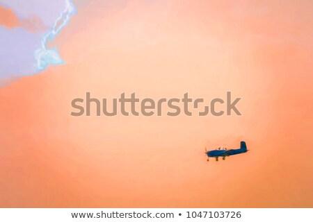 Single large aircraft silhouette 2 stock photo © lkeskinen