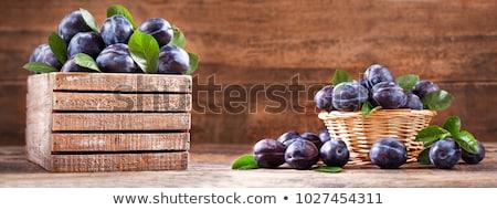 Pruim tabel smakelijk landbouw afbeelding Stockfoto © stevanovicigor