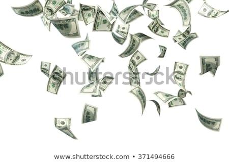 дождь долларов бизнеса фон успех мечта Сток-фото © pterwort