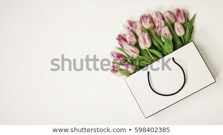 virágcsokor · rózsaszín · tulipánok · zöld · edény · izolált - stock fotó © compuinfoto