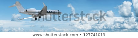 Private jet is maneuvering for landing. Panoramic composition. Stock photo © moses