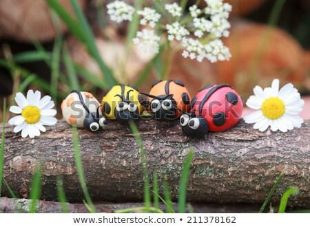 ladybird from plasticine Stock photo © jonnysek
