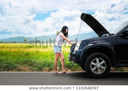 vrouw · auto · veld · mooie · jonge · vrouw - stockfoto © kyolshin