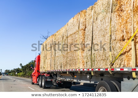 Stockfoto: Gouden · stro · hooi · amerikaanse · platteland