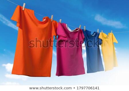 Laundry on clothesline Stock photo © fxegs