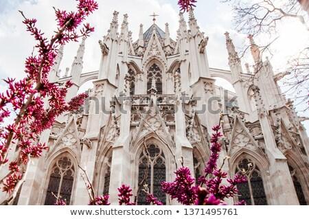 Spires of the Votivkirche, Vienna, Austria Stock photo © Bertl123
