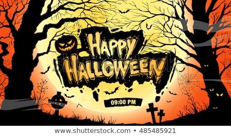 ház · vámpír · halloween · éjszaka · démoni · ajtó - stock fotó © bharat
