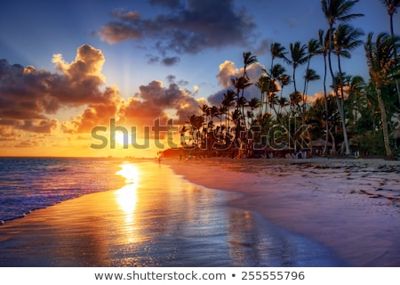 Bali beach at sunset Stock photo © Komar