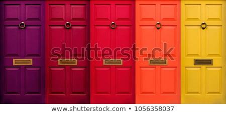Przednie drzwi domu starych drzwi drewna Zdjęcia stock © EwaStudio