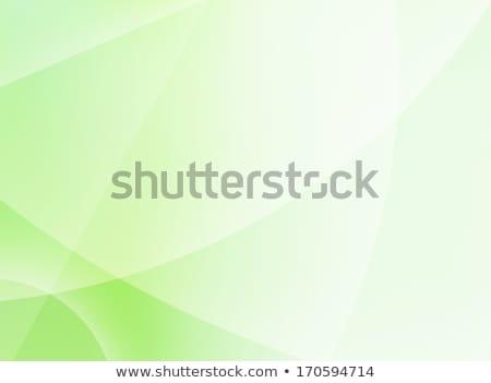 Abstract groene achtergronden eps 10 vector Stockfoto © beholdereye