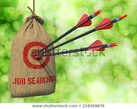 Desempleo flechas rojo objetivo tres Foto stock © tashatuvango